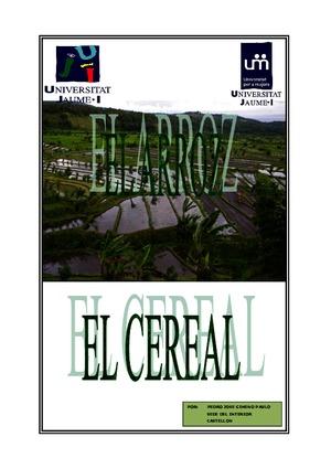 HISTORIA-DEL-ARROZ_2