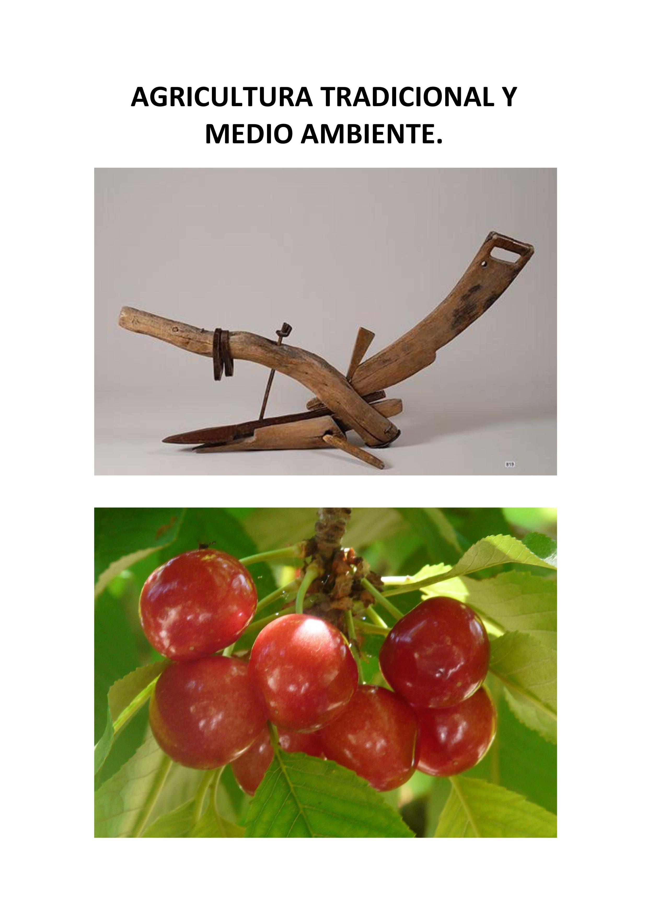 TRABAJO-AGRICULTURA-DEFINITIVO