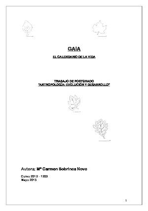 GAIA-Postgrado-2013